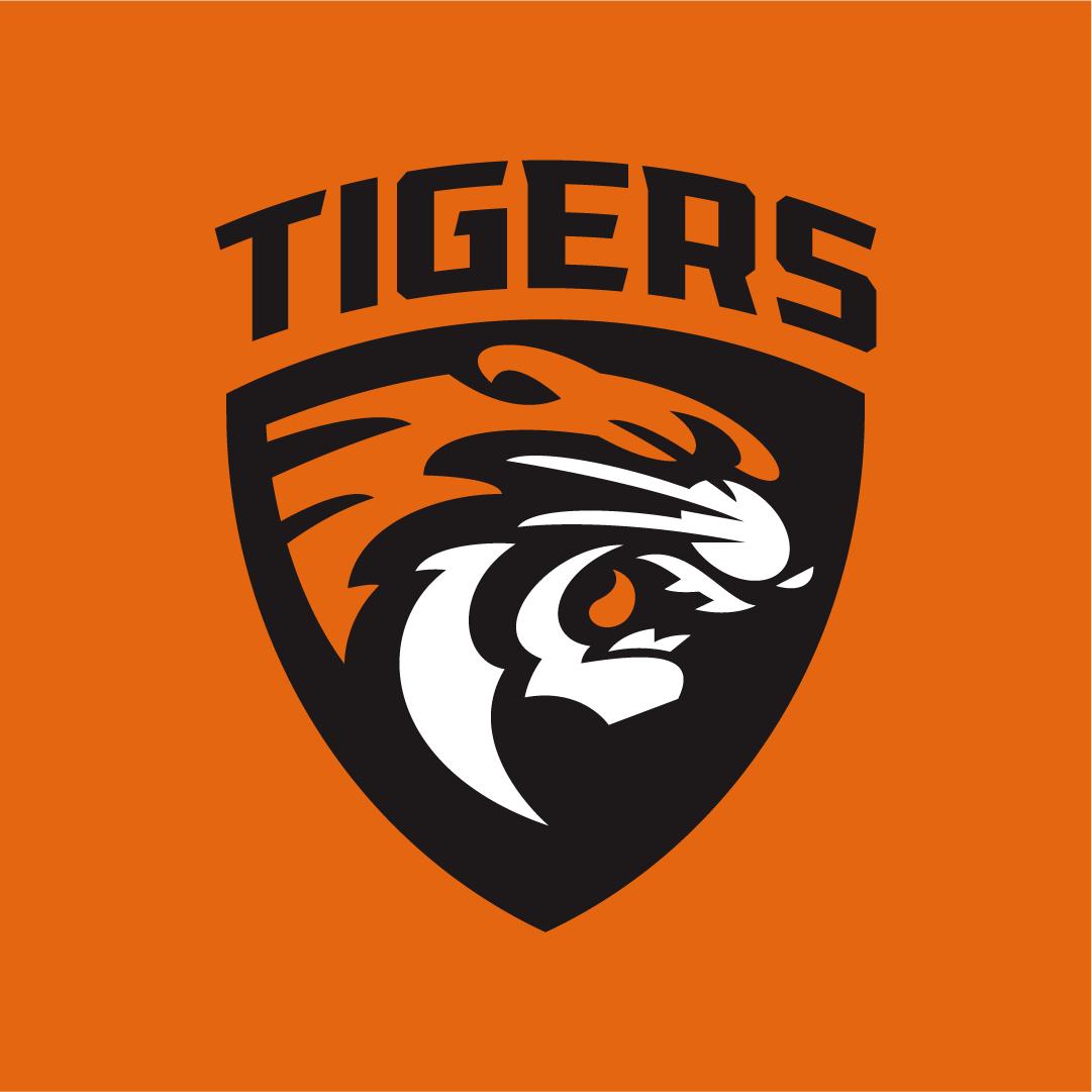 projektowanie herbu sportowego